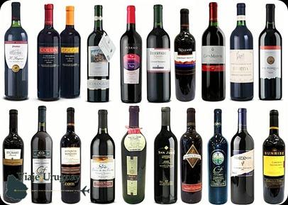 el-vino-tannat-de-uruguay112