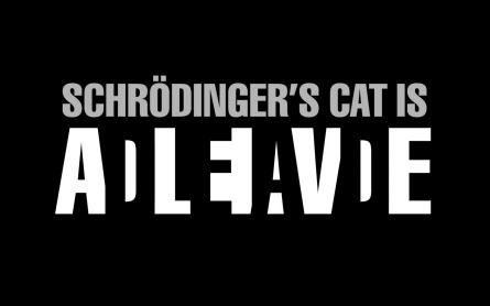 Schrodinger-s-Cat-the-big-bang-theory-12516974-1440-900