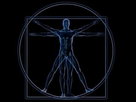 Los-12-elementos-químicos-del-cuerpo-humano-1