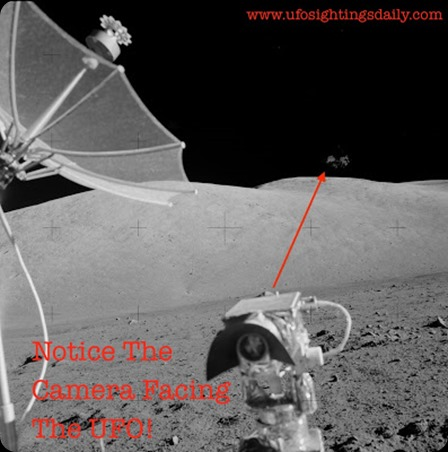 Mars, Rover, Curiosity, dog, face, lion, animal, alien, aliens, ET, UFO, UFOS, sighting, sightings, top secret, Justin Bieber, paranormal, news, June, 2013, NASA, Angelina Jolie, Apollo, HR